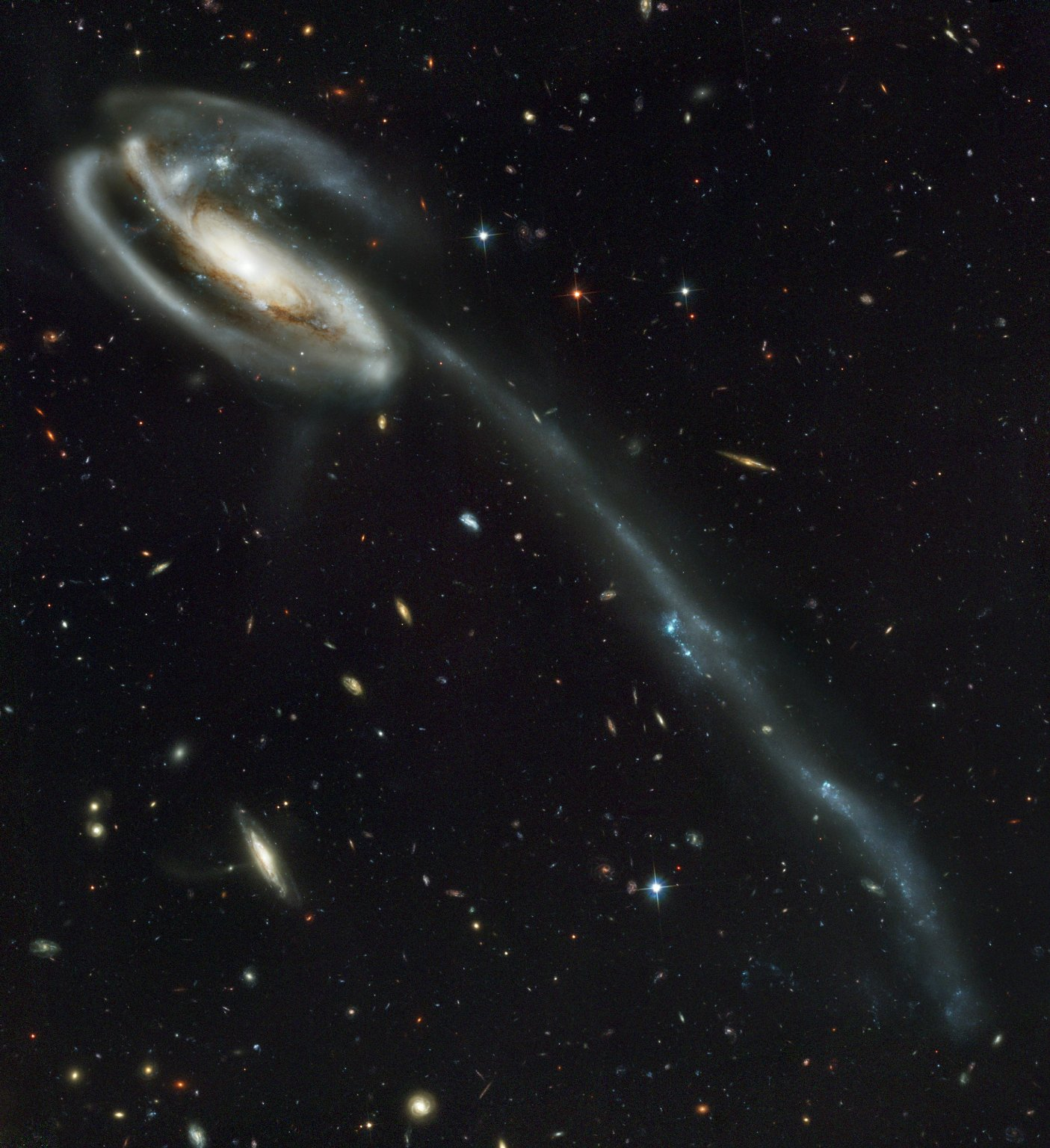 """This picture of the galaxy UGC 10214 was was taken by the Advanced Camera for Surveys (ACS), which was installed aboard the Hubble Space Telescope (HST) in March 2002 during HST Servicing Mission 3B (STS-109 mission). Dubbed the """"Tadpole,"""" this spiral galaxy is unlike the textbook images of stately galaxies. Its distorted shape was caused by a small interloper, a very blue, compact galaxy visible in the upper left corner of the more massive Tadpole. The Tadpole resides about 420 million light-years away in the constellation Draco. Seen shining through the Tadpole's disk, the tiny intruder is likely a hit-and-run galaxy that is now leaving the scene of the accident. Credit: NASA / Marshall Space Flight Center"""