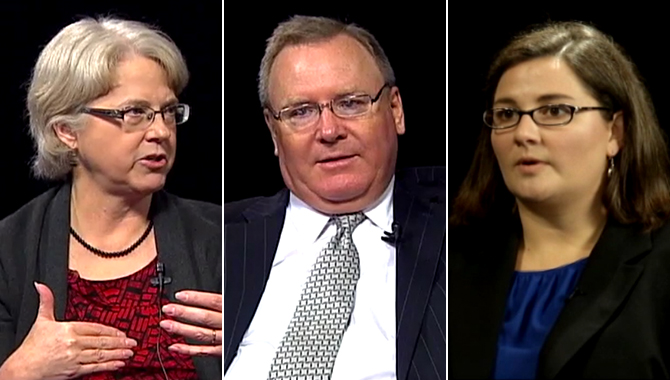 Screenshots from the VPMC with Doug Comstock, Kristin Van Wychen, and Mary Beth Zimmerman.