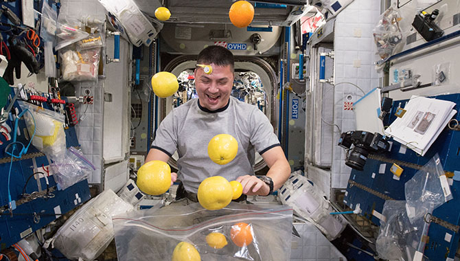 NASA Astronaut Kjell Lindgren corrals the supply of fresh fruit that arrived at the International Space Station in August 2015. Photo Credit: NASA